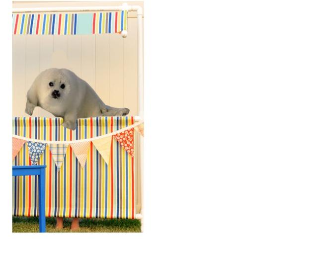 SealClub