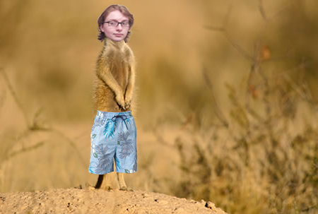 Meerisakat is ready to hit the beach. It's too bad meerkats live hundreds of miles away from any ocean...